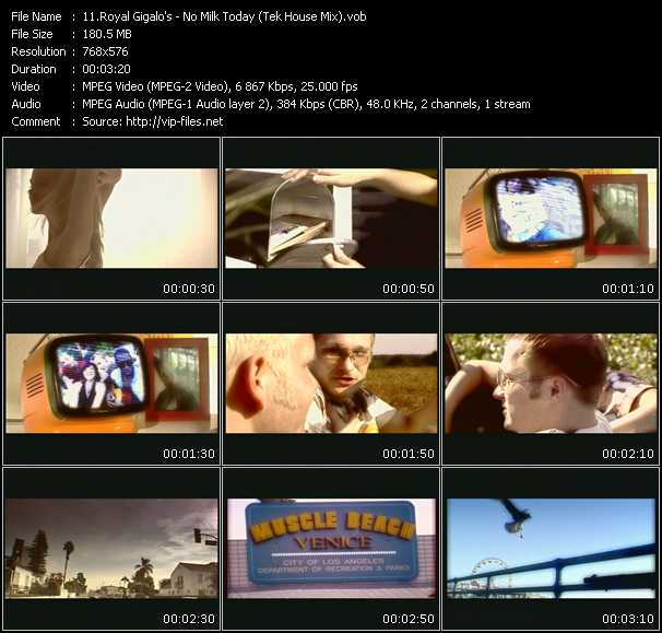 Screenshot of Music Video Royal Gigalo's - No Milk Today (Tek House Mix)