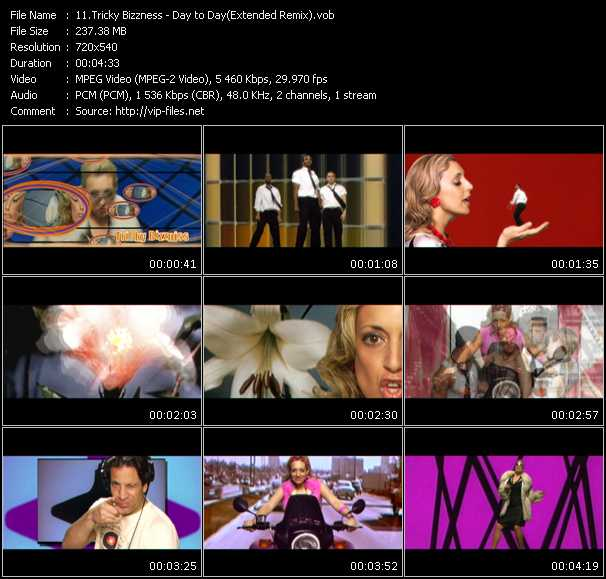 Screenshot of Music Video Tricky Bizzniss - Day to Day (Extended Remix)