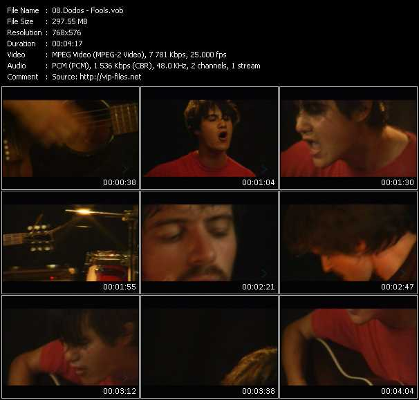 Screenshot of Music Video Dodos - Fools