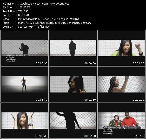 Screenshot of Music Video Delinquent Feat. KCAT - My Destiny