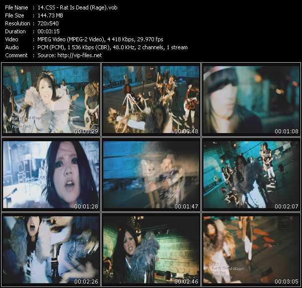 Screenshot of Music Video Css - Rat Is Dead (Rage)