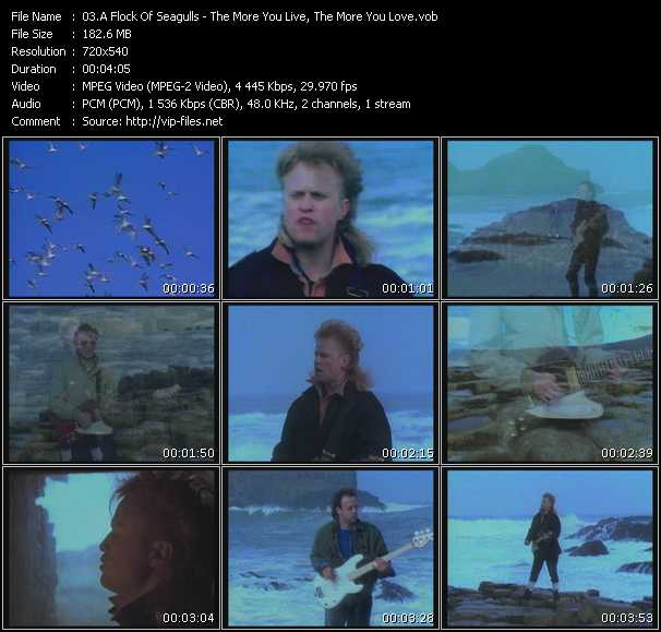 Screenshot of Music Video A Flock Of Seagulls - The More You Live, The More You Love