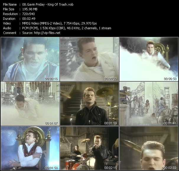 Gavin Friday video vob