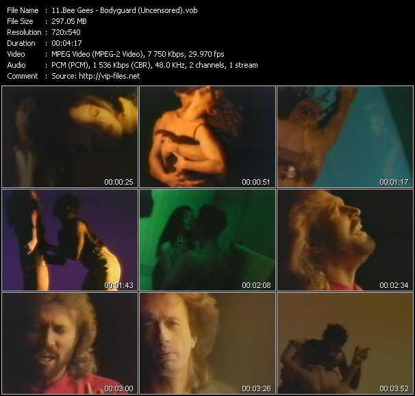 Bee Gees video vob
