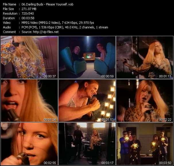 Screenshot of Music Video Darling Buds - Please Yourself