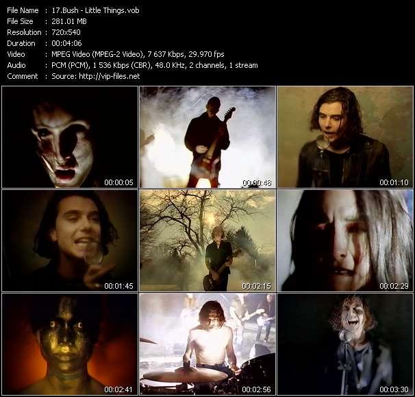Screenshot of Music Video Bush - Little Things