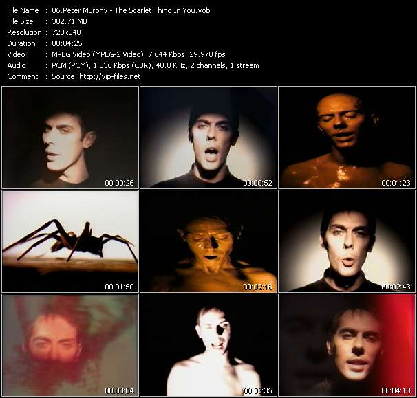 Screenshot of Music Video Peter Murphy - The Scarlet Thing In You