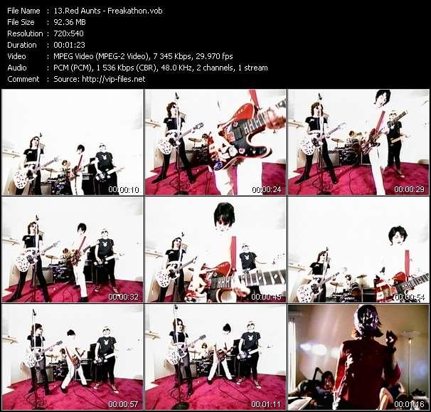Screenshot of Music Video Red Aunts - Freakathon
