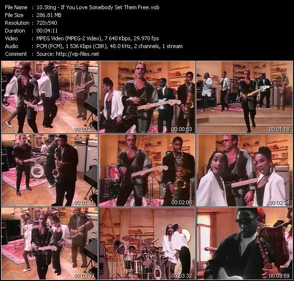 Screenshot of Music Video Sting - If You Love Somebody Set Them Free