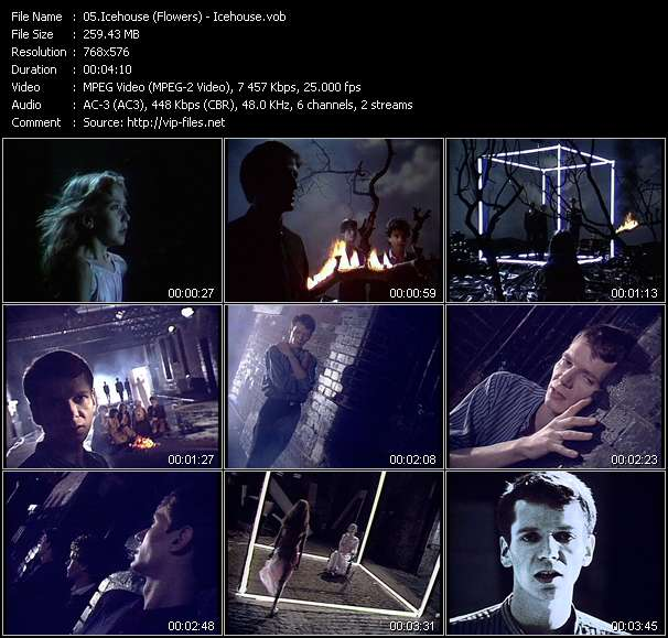 Screenshot of Music Video Icehouse (Flowers) - Icehouse