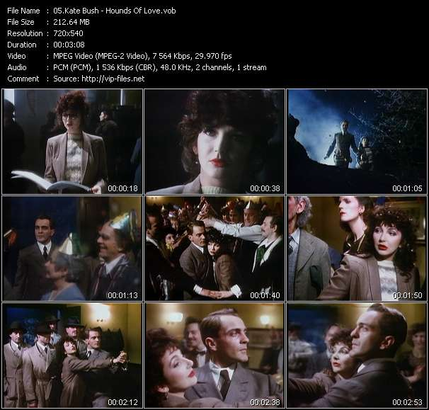 Screenshot of Music Video Kate Bush - Hounds Of Love