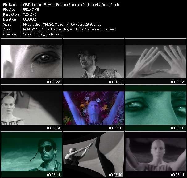 Screenshot of Music Video Delerium - Flowers Become Screens (Rockamerica Remix)