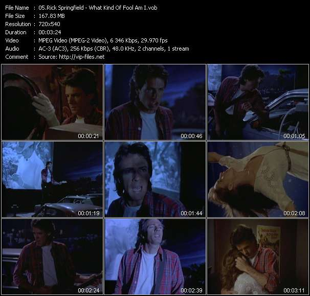 Screenshot of Music Video Rick Springfield - What Kind Of Fool Am I