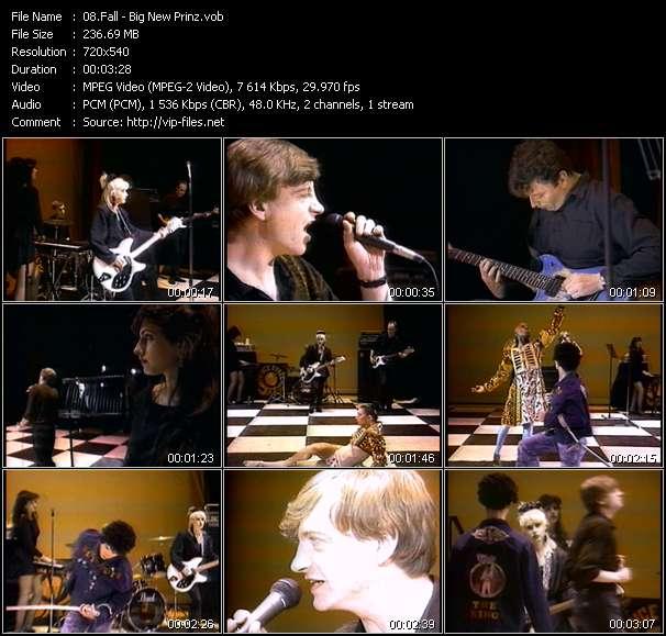 Screenshot of Music Video Fall - Big New Prinz