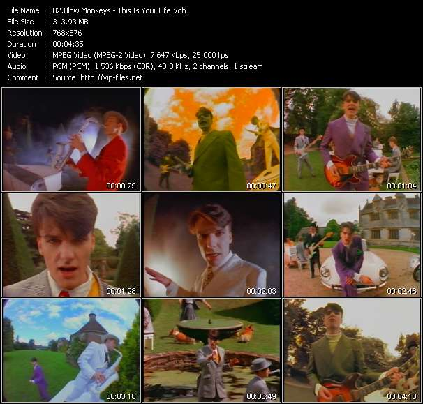 Screenshot of Music Video Blow Monkeys - This Is Your Life