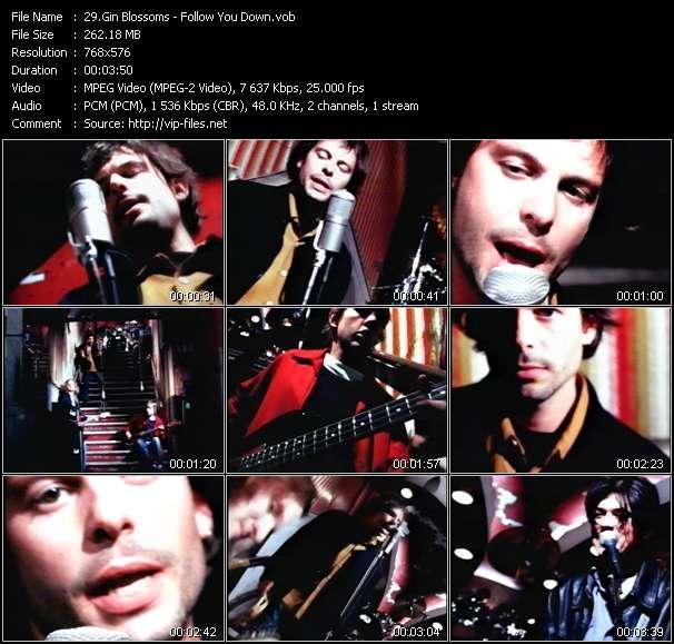Screenshot of Music Video Gin Blossoms - Follow You Down