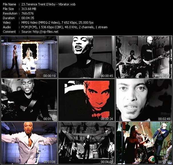 Screenshot of Music Video Terence Trent D'Arby - Vibrator
