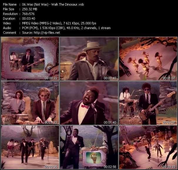 Screenshot of Music Video Was (Not Was) - Walk The Dinosaur