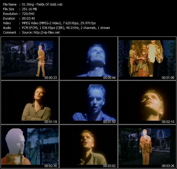 Screenshot of Music Video Sting - Fields Of Gold