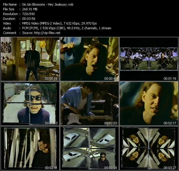 Gin Blossoms video vob