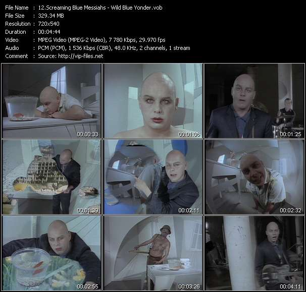 Screenshot of Music Video Screaming Blue Messiahs - Wild Blue Yonder