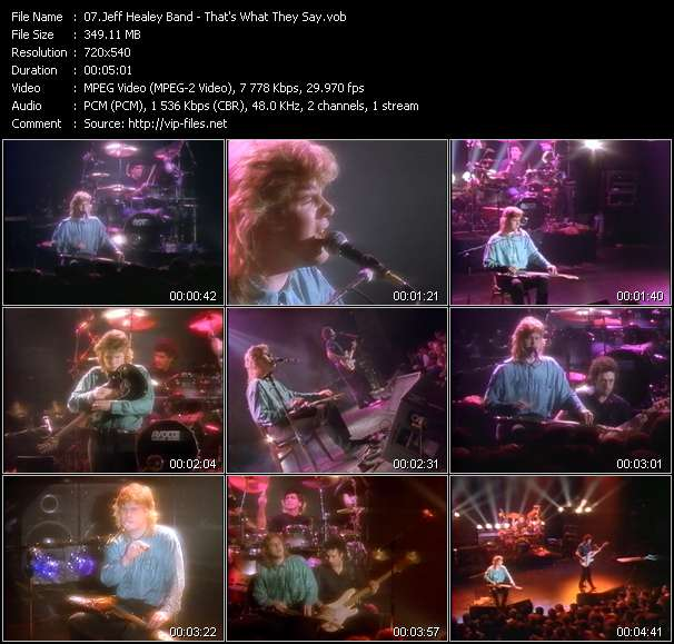 Jeff Healey Band video vob