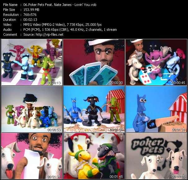 Screenshot of Music Video Poker Pets Feat. Nate James - Lovin' You
