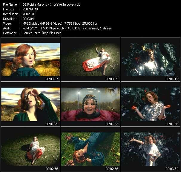Roisin Murphy видеоклип vob