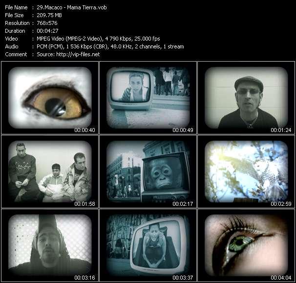 Screenshot of Music Video Macaco - Mama Tierra