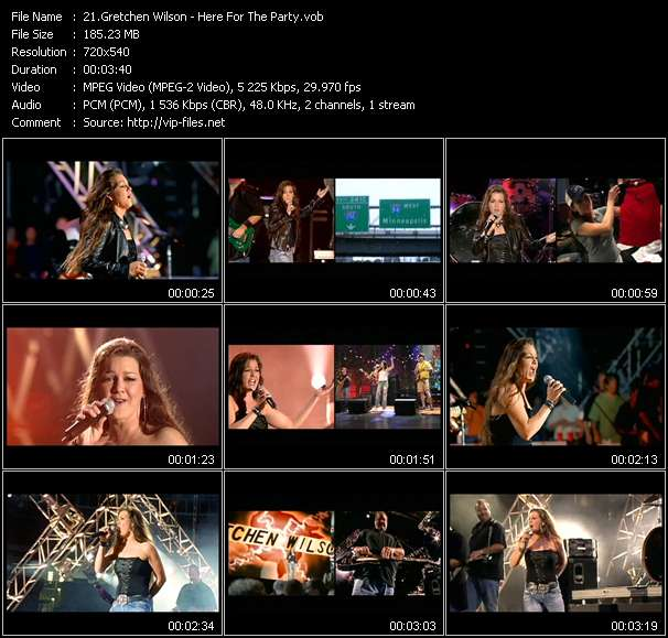 Gretchen Wilson video vob