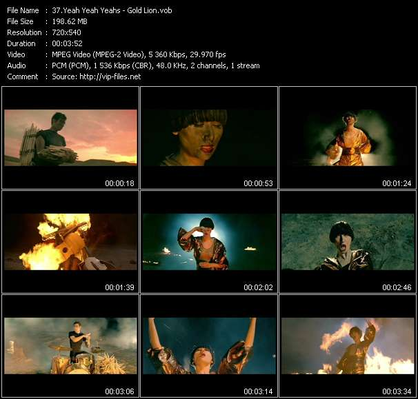 Screenshot of Music Video Yeah Yeah Yeahs - Gold Lion