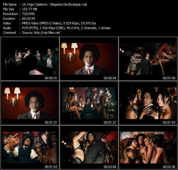 Screenshot of Music Video Tego Calderon - Elegante De Boutique