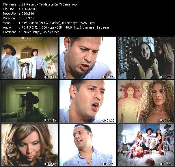Screenshot of Music Video Palomo - Te Metiste En Mi Cama