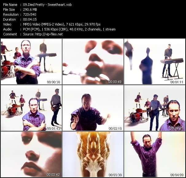 Screenshot of Music Video Died Pretty - Sweetheart
