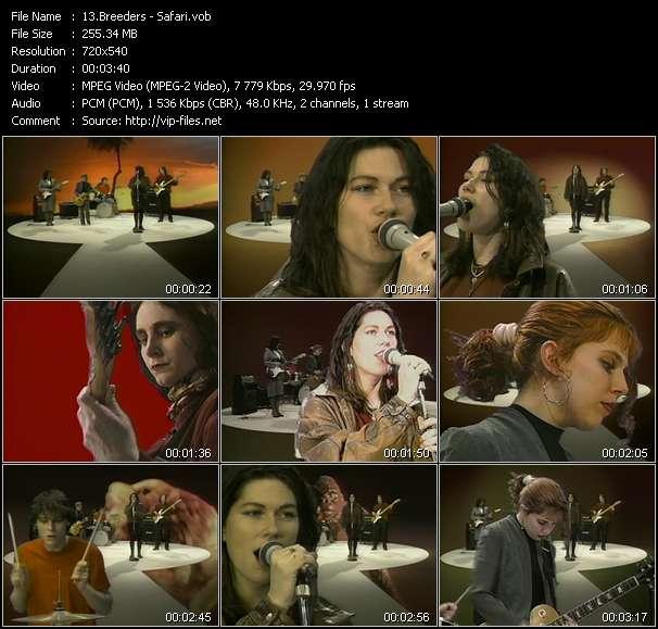 Screenshot of Music Video Breeders - Safari