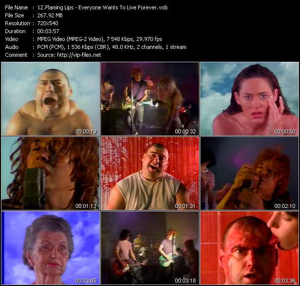 Flaming Lips video vob