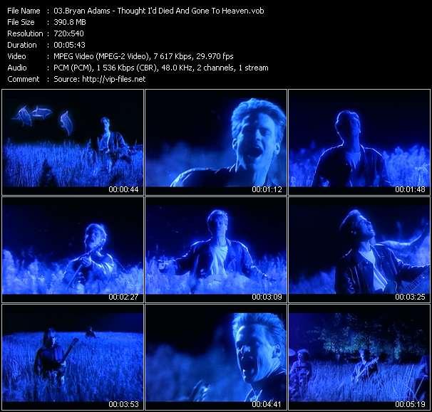 B. Adams видеоклип vob