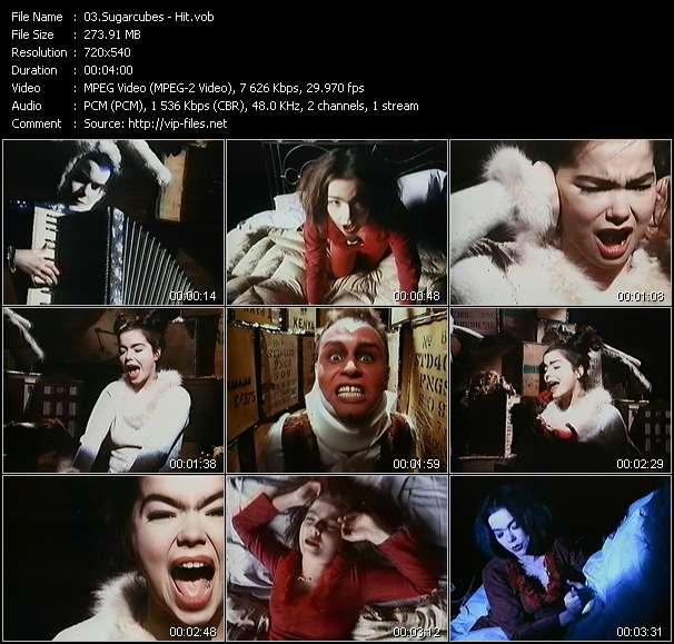 Screenshot of Music Video Sugarcubes - Hit