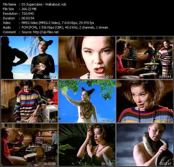 Screenshot of Music Video Sugarcubes - Walkabout