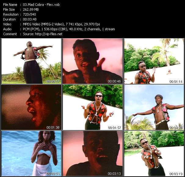 Screenshot of Music Video Mad Cobra - Flex