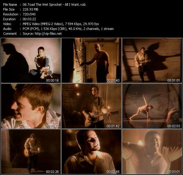 Toad The Wet Sprocket video vob