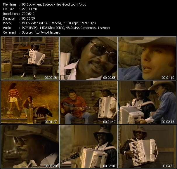 Screenshot of Music Video Buckwheat Zydeco - Hey Good Lookin'