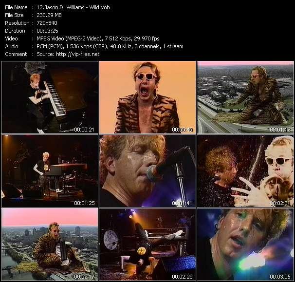 Screenshot of Music Video Jason D. Williams - Wild