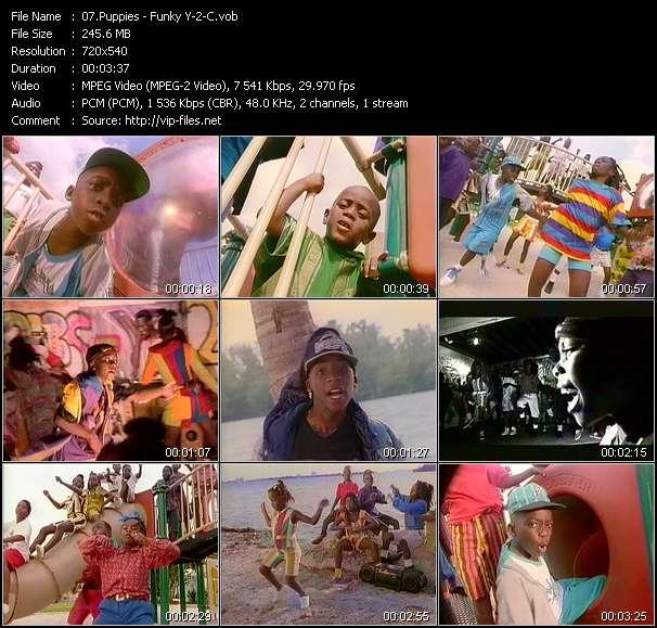 Screenshot of Music Video Puppies - Funky Y-2-C