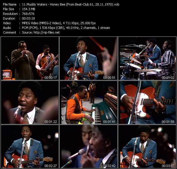 Screenshot of Music Video Muddy Waters - Honey Bee (From Beat-Club 61, 28.11.1970)