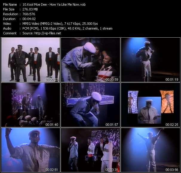 Screenshot of Music Video Kool Moe Dee - How Ya Like Me Now