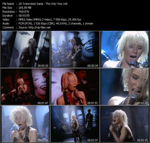 Transvision Vamp video vob