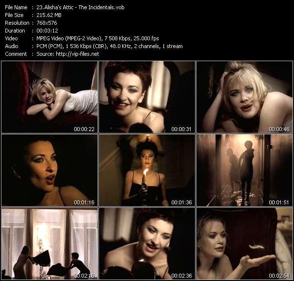 Screenshot of Music Video Alisha's Attic - The Incidentals
