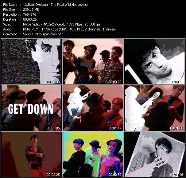 Screenshot of Music Video Raul Orellana - The Real Wild House