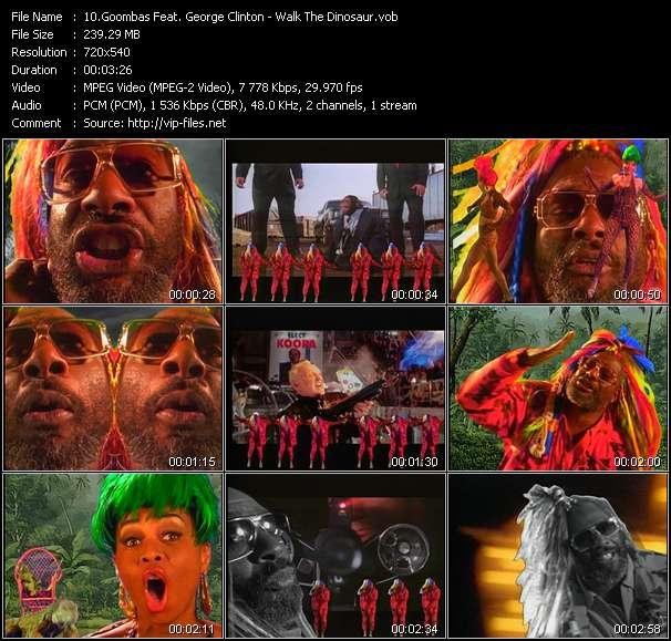 Goombas Feat. George Clinton video vob